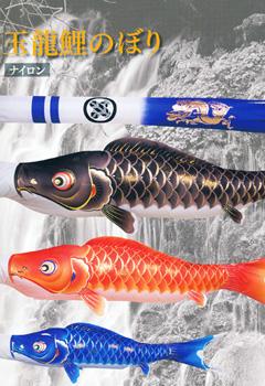 玉龍鯉のぼり