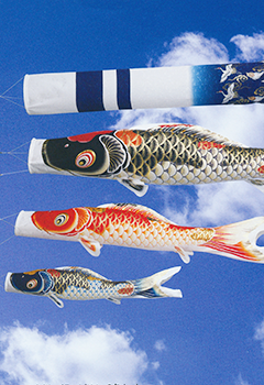 吉祥天鯉のぼり「29年度新作」